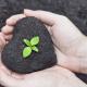 Dynamics 365 for Nonprofits
